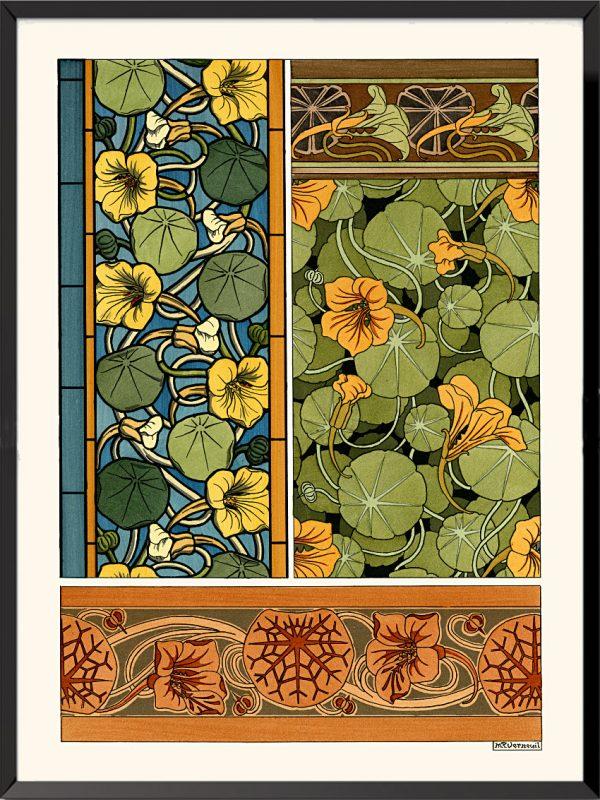 Illustration La plante et ses applications ornementales, 1896, Capucines de Maurice Pillard-Verneuil