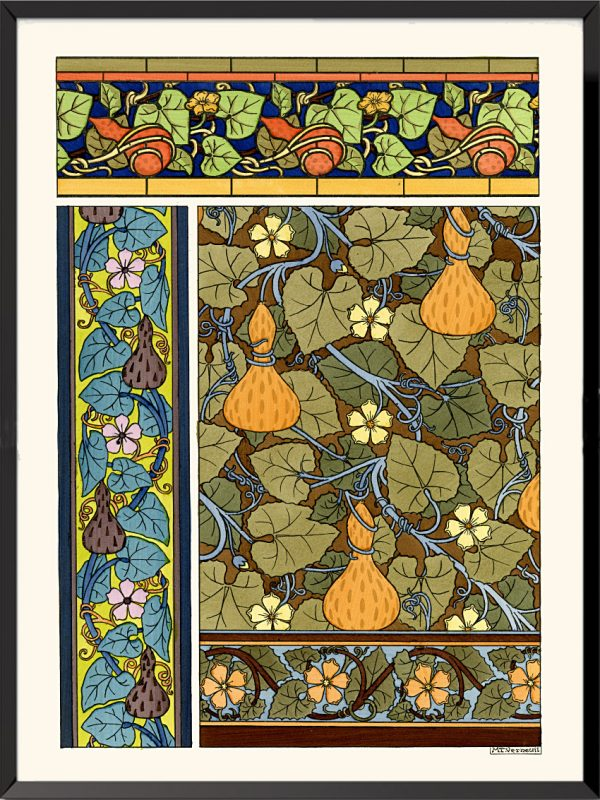Illustration La plante et ses applications ornementales, 1896, Citrouilles de Maurice Pillard-Verneuil
