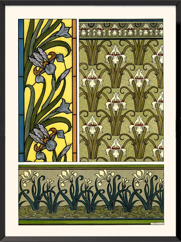 Illustration La plante et ses applications ornementales, 1896, Iris de Maurice Pillard-Verneuil