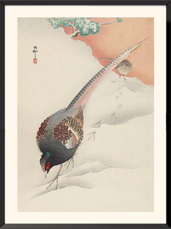 Estampe Faisan versicolore de Ohara Koson